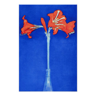 Piet Mondrian - Amaryllis Póster