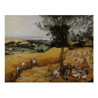 Pieter Bruegel the Elder - The Harvesters Postcard