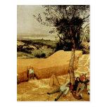Pieter Bruegel's The Harvesters (1565) Postcard