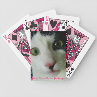 Pietro Bram Aaron Pendragon Deck Bicycle Playing Cards