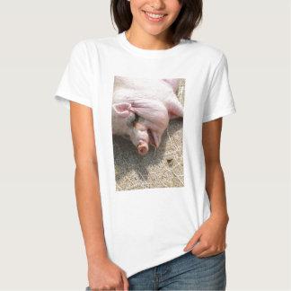pig-123619_1920.jpg t-shirt