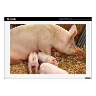 """Pig 17"""" Laptop Skin"""