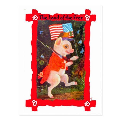 Pig as revolutionary soldier postcard