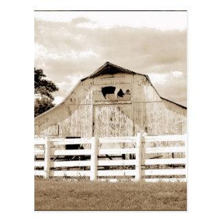 Pig Barn Postcard