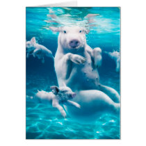Pig beach - swimming pigs - funny pig card