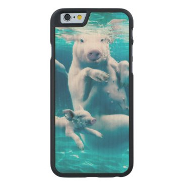 Beach Themed Pig beach - swimming pigs - funny pig carved maple iPhone 6 case