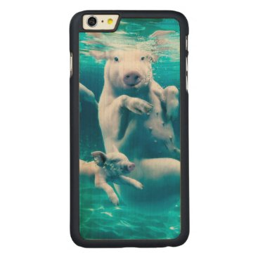 Beach Themed Pig beach - swimming pigs - funny pig carved maple iPhone 6 plus slim case