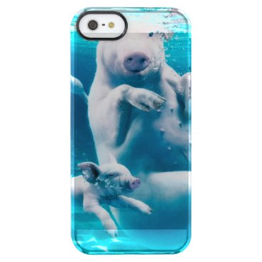 Beach Themed Pig beach - swimming pigs - funny pig clear iPhone SE/5/5s case