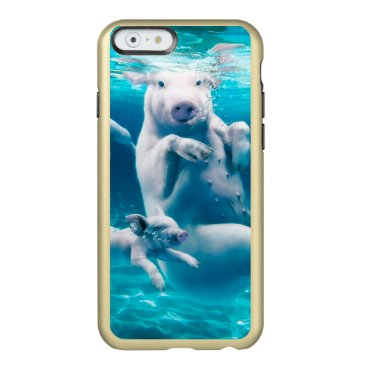 Beach Themed Pig beach - swimming pigs - funny pig incipio feather shine iPhone 6 case