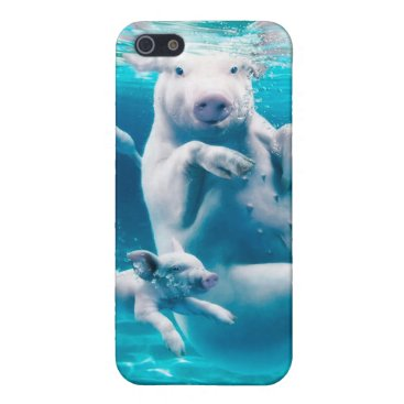 Beach Themed Pig beach - swimming pigs - funny pig iPhone SE/5/5s case