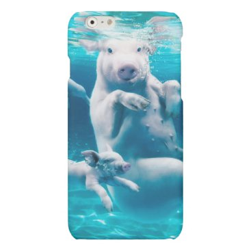 Beach Themed Pig beach - swimming pigs - funny pig matte iPhone 6 case