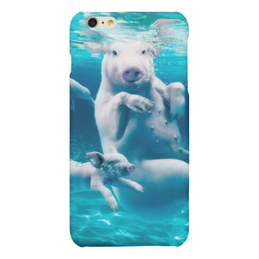 Beach Themed Pig beach - swimming pigs - funny pig matte iPhone 6 plus case