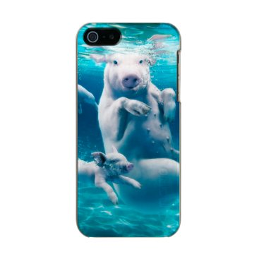 Beach Themed Pig beach - swimming pigs - funny pig metallic phone case for iPhone SE/5/5s