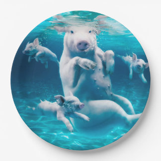 Pig beach - swimming pigs - funny pig paper plate