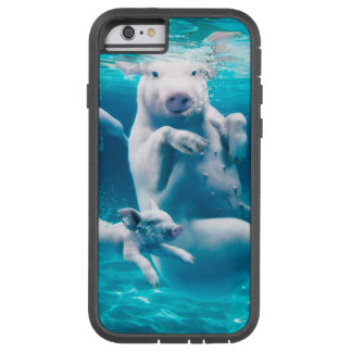 Pig beach - swimming pigs - funny pig tough xtreme iPhone 6 case