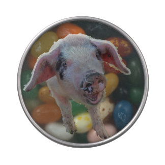 Pig candy jar jelly belly candy tins