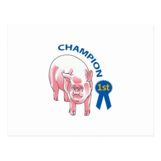 PIG CHAMPION POSTCARD