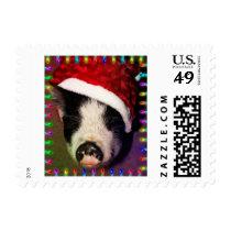 Pig Christmas Stamp