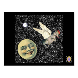 Pig Dreams Postcard