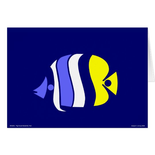 Pig Faced Butterfly Fish Card