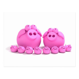Pig family post card