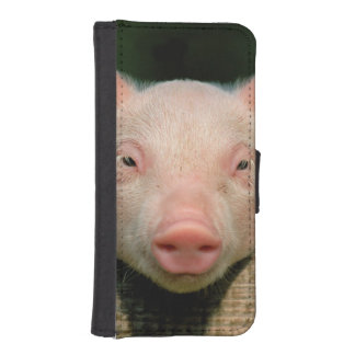 Pig farm - pig face iPhone SE/5/5s wallet case