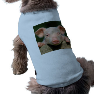 Pig farm - pig face tee