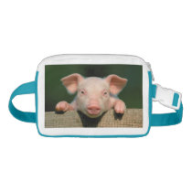 Pig farm - pig face waist bag