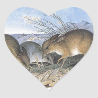 Pig Footed Bandicoot Heart Sticker