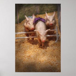 Pig -  Getting past hurdles Print