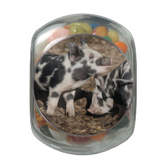Pig Glass Candy Jars
