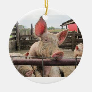 Pig Greeting Ceramic Ornament