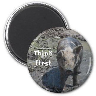 Pig in a Pen Magnet