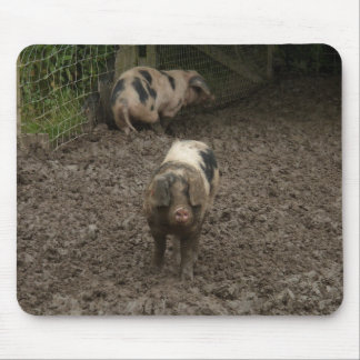 Pig in mud mouse pad