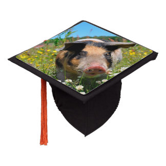 Pig in the Nature Graduation Cap Topper