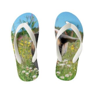 Pig in the Nature Kid's Flip Flops