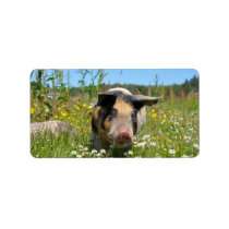 Pig in the Nature Label