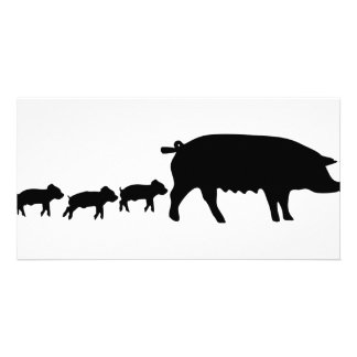 pig mum with three young pigs icon photo cards