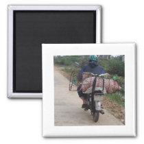 Pig on a Motorbike Magnet