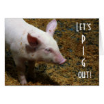 Pig Out!   Baby Piglet Photo Cards