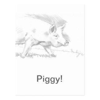 Pig Pencil Drawing Postcard