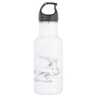 Pig Pencil Drawing Stainless Steel Water Bottle