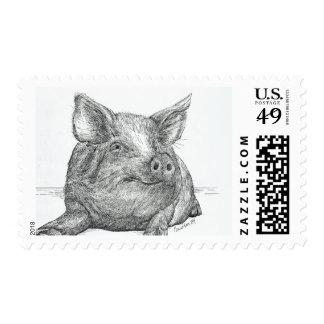 Pig Piglet Postage