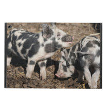 Pig Powis iPad Air 2 Case