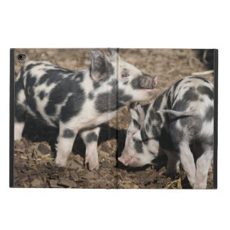 Pig Powis iPad Air 2 Case