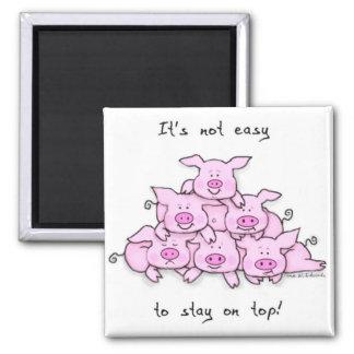 Pig Pyramid Fridge Magnet