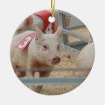 Pig racing pink piglet number three ornament