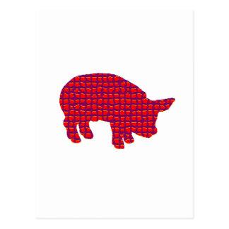 Pig Reddd Postcard