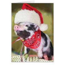 Pig santa claus - christmas pig - piglet card
