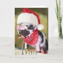 Pig santa claus - christmas pig - piglet holiday card